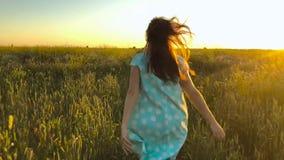 跑在日落天空的绿色麦田的秀丽女孩 查出的黑色概念自由 在日落的麦田 股票视频