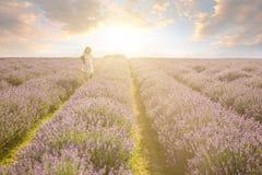 跑在日落淡紫色领域 免版税图库摄影