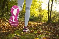 跑在日落的健身女孩 免版税库存照片