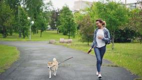 跑在有享用自然,自由和室外的美丽的小狗的城市公园的愉快的混合的族种女孩的慢动作 影视素材