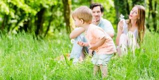 跑在有家庭的草甸的小男孩  库存图片