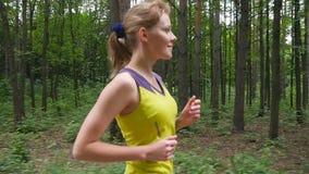 跑在森林足迹的女孩 股票录像