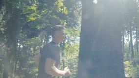 跑在森林里的英俊的白种人人在晴天期间 股票视频