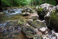 跑在生苔岩石的水小河 免版税库存照片