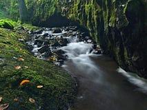 跑在石渣和石头的小河被弄脏的蓝色波浪。   库存照片