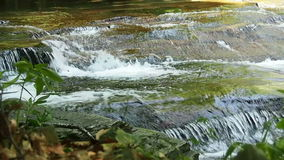 跑在石头的瀑布在森林里 股票视频
