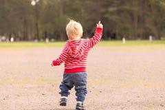 跑在秋天公园的一个年小孩 回到视图 库存图片