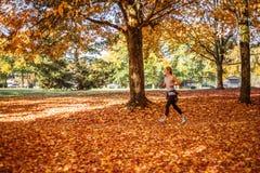 跑在秋天黄色公园的温哥华加拿大- 2017 10月29日,运动的少妇早晨 免版税图库摄影