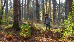 跑在秋季森林里的愉快的孩子 股票录像