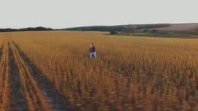 跑在草甸的夫妇 影视素材