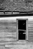 跑在被放弃的农厂议院被漂白的烂掉木头下 免版税库存图片