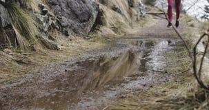 跑在足迹道路的运动员女孩 在腿和水坑浪花的细节 真正的人妇女赛跑者体育训练在秋天或 库存图片