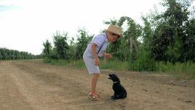跑在附近和使用在苹果庭院,慢动作里的小男孩和小狗 股票视频