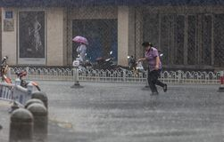 跑在雨中的妇女 库存图片