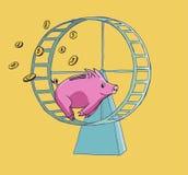 跑在仓鼠轮子的存钱罐 库存图片