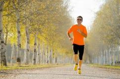 跑户外在路足迹的体育人研了与树在美好的秋天阳光下 免版税库存照片