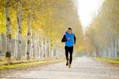 跑户外在路足迹的体育人研了与树在美好的秋天阳光下 免版税库存图片