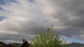 跑横跨天空蔚蓝的白色云彩,滚动的松的云彩在一个夏日移动 股票录像