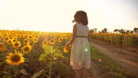 跑横跨领域的小女孩用向日葵在日落 慢动作录影 在生活方式的女孩赛跑者领域在 股票录像