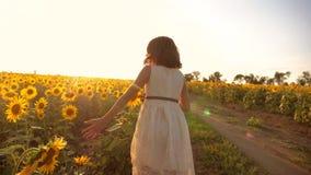 跑横跨领域的小女孩用向日葵在日落 慢动作录影 在领域生活方式的女孩赛跑者在 影视素材