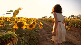跑横跨领域的小女孩用向日葵在日落 慢动作录影 在领域的女孩赛跑者在日落 影视素材