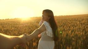 跑横跨领域的幸福家庭握手 有她的女儿步行的美女在领域用麦子,拿着她 股票视频