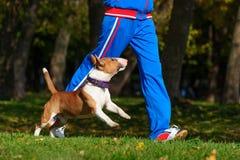 跑步与狗 免版税图库摄影