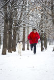 跑步与狗 库存照片