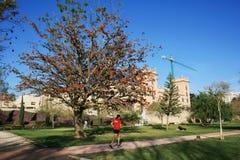 跑步和放松在春天庭院,巴伦西亚,西班牙里的人们 图库摄影