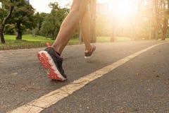 跑步在公园的年轻女人早晨在温暖的sunlig下 库存照片