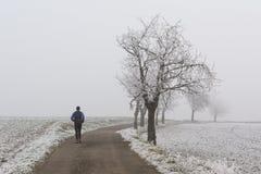 跑步在冬天雾 免版税库存图片