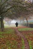 跑步在有雾的一个秋季公园的赛跑者 免版税库存照片
