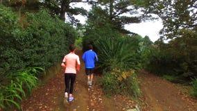 跑步在森林道路的夫妇 股票录像