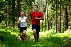 跑步在森林里 图库摄影