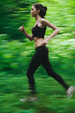 跑步在森林里 免版税库存照片