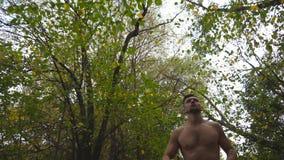 跑步沿足迹的低观点的英俊的肌肉人在森林在夏日 跑沿道路的运动人在自然 影视素材