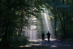 跑步的夫妇现出轮廓反对光束在黑暗的森林里 免版税库存图片