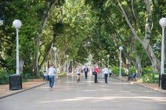 跑步的海德公园 库存照片