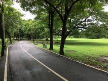 跑步的街道 免版税库存照片