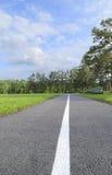 跑步的轨道在公园 库存图片