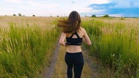 跑步适合的妇女行使跑的心脏室外在夏天领域 锻炼母赛跑者 影视素材