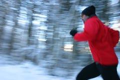 跑步winterforest 库存照片
