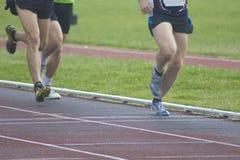 跑的运动员,体育 免版税图库摄影