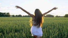 跑美丽的女孩举在麦田的手在日落 自由,健康,幸福概念 愉快的秀丽年轻人 股票录像
