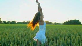 跑美丽的女孩举在麦田的手在日落 自由,健康,幸福概念 愉快的秀丽年轻人 股票视频