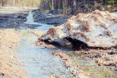 跑通过一个领域的小河在冬天 免版税库存照片