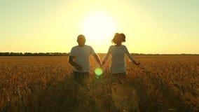 跑通过一块麦田的愉快的年轻夫妇 年轻人和妇女举行手 高速照相机,慢动作 影视素材