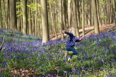 跑通过会开蓝色钟形花的草的白肤金发的女孩在Hallerbos森林 库存图片