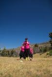 跑通过在新兵训练所的锥体的小组妇女 库存图片