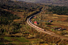 跑通过巨大froest的旅客列车(II) 免版税图库摄影